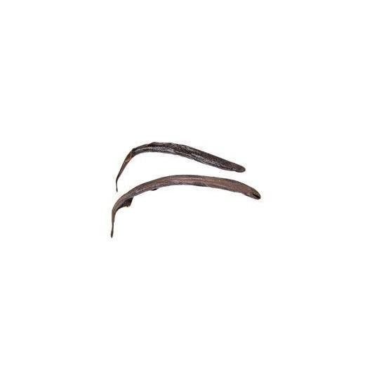 Lamprey  Plain Qty Discount Available
