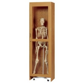 Skeleton Cabinet  for Rolling Stand Skeletons