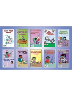 "Laboratory Safety Posters Set Size: - 11"" x 17"""